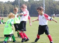 この画像は、サイトの記事「第35回全日本少年サッカー大会 2011 ハイライト 動画名場面感動シーン総まとめ」のイメージ写真画像として利用しています。