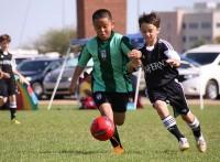 この画像は、サイトの記事「小学生 少年サッカー 『レジスタFC』 おすすめ YouTubeスポーツ視聴無料動画 まとめてご紹介!」のイメージ写真画像として利用しています。
